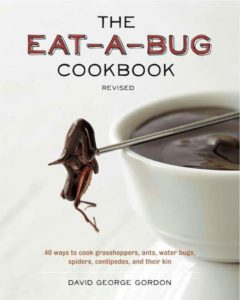 Foodie-Sound-insectos-cookbook